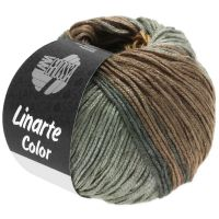 Linarte Color Lana Grossa